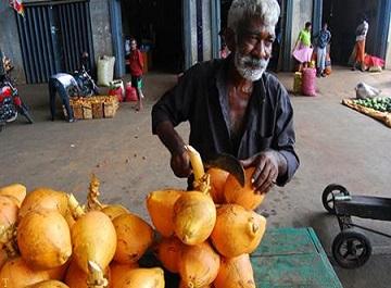 فرهنگ و آداب و رسوم مردم سریلانکا