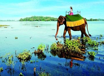 سریلانکا کجاست ؟